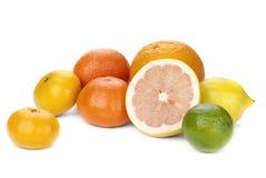 cytrus mieszanka kolorowa owocowa Obraz Royalty Free