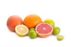 Cytrus owoc zdjęcie royalty free