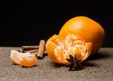 Cytrus owoc Fotografia Stock