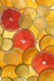 Cytrus Owoc Obraz Stock