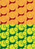 Cytrus owoc bezszwowi wzory Obrazy Stock