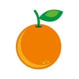 cytrus owoc ikony odizolowywający projekt Obrazy Royalty Free
