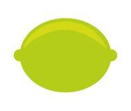 cytrus owoc ikony odizolowywający projekt Fotografia Stock
