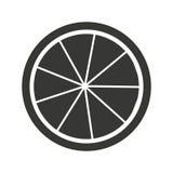 cytrus owoc ikony odizolowywający projekt Obraz Stock
