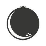 cytrus owoc ikony odizolowywający projekt Zdjęcie Stock