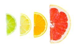 cytrus owoc mieszał Zdjęcie Stock