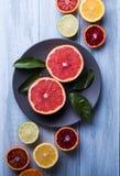 Cytrus owoc plasterka odgórnego widoku drewnianego tła cytryny grapefruits liścia pomarańczowy wzór obrazy stock