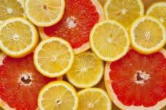 Cytrus owoc plasterki Grapefruits i cytryny zdjęcia stock