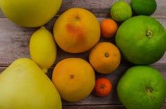 Cytrus owoc pomarańcze, cytryna, grapefruitowa, mandarynka, wapno zdjęcie stock