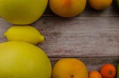 Cytrus owoc pomarańcze, cytryna, grapefruitowa, mandarynka, wapno obraz royalty free