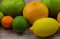 Cytrus owoc pomarańcze, cytryna, grapefruitowa, mandarynka, wapno fotografia stock