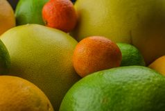 Cytrus owoc pomarańcze, cytryna, grapefruitowa, mandarynka, wapno zdjęcia stock