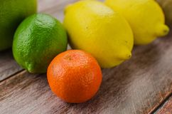 Cytrus owoc pomarańcze, cytryna, grapefruitowa, mandarynka, wapno fotografia royalty free