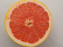 Cytrus owoc pomarańcze, cytryna, grapefruitowa, mandarynka, wapno obrazy stock