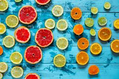 Cytrus owoc pomarańcze, cytryna, grapefruitowa, mandarynka, wapno na błękitnym tle zdjęcie stock