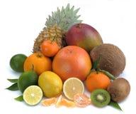 cytrus owoc ustawiają tropikalnego obrazy stock