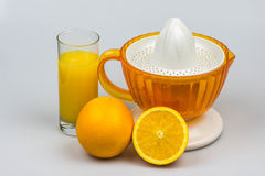 Cytrusa juicer z pomarańczami i cytryną odizolowywającymi na białym tle Zdjęcia Royalty Free