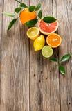 cytrusa kolekci owoc Fotografia Royalty Free