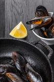 cytryn gotujący mussels zdjęcie stock