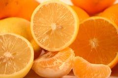 cytryn mandarynek pomarańcze Zdjęcie Stock