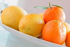 Cytryna i mandarynka zdjęcia royalty free