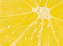 cytryna plasterek Obrazy Royalty Free