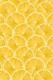 Cytryna plasterka Abstrakcjonistyczny Bezszwowy wzór Obrazy Stock