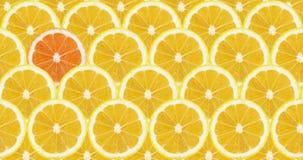 Cytryna plasterka wzory jeden pomarańczowy kolor zdjęcia stock