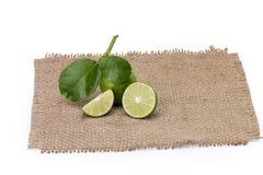 Cytryna z liśćmi odizolowywającymi na białym tle zdjęcie stock