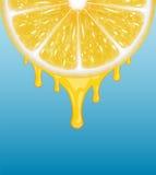 cytryny świeże kawałki żółtego ilustracji