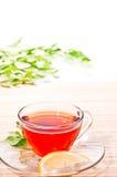cytryny gorąca herbata Fotografia Stock
