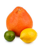 cytryny grapefruitowy wapno Zdjęcia Stock