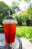 Cytryny herbata w jasnym plastikowym szkle na stole fotografia royalty free