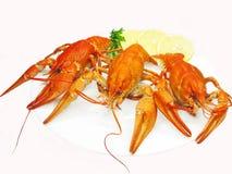 cytryny homarów talerza czerwona rzeka Fotografia Royalty Free