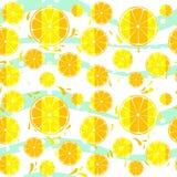 Cytryny i oranged plasterka pluśnięcia bezszwowy deseniowy tło Zdjęcia Royalty Free