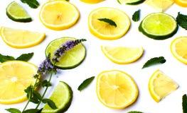Cytryny i wapna plasterki z nowymi liśćmi Zdjęcia Royalty Free