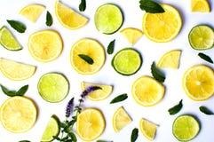 Cytryny i wapna plasterki z nowymi liśćmi na bielu Fotografia Stock