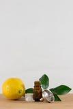 Cytryny Istotna Nafciana butelka Z nakrętką, cytrusów liśćmi i lejem Białymi, Zdjęcia Royalty Free