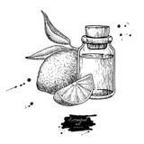 Cytryny istotnej nafcianej butelki i cytryny owocowa ręka rysująca wektorowa ilustracja Odosobniony rysunek dla Aromatherapy trak Fotografia Stock