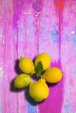 Cytryny na różowym kolorowym podławym modnym tle obrazy stock