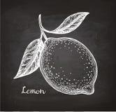 Cytryny nakreślenie na chalkboard Zdjęcie Stock