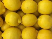 Cytryny owoc Zdjęcie Royalty Free