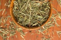 Cytryny trawa Cymbopogon citratus Capim Limao, Santo Obrazy Royalty Free