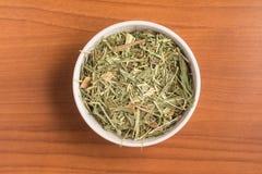 Cytryny trawa Cymbopogon citratus Capim Limao, Santo Obrazy Stock