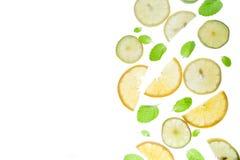 Cytryny, wapna i mennicy wzór, obraz stock