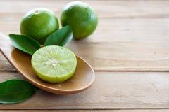Cytryny z zielonym liściem Zdjęcie Royalty Free