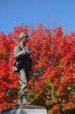 Cywilnej wojny żołnierza zabytek przeciw krwionośnemu czerwonemu drzewu obrazy royalty free