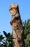 Cyzelowanie zielony mężczyzna i księżyc w wysokim drzewo bagażniku przy Linnaeus nauczaniem Uprawiamy ogródek w Tulsa Oklahoma us zdjęcie royalty free