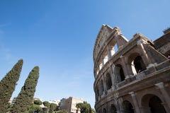 Część ściana Colosseum w Rzym z cyprysem na tle obraz royalty free