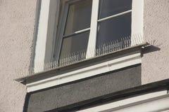 Część fasada budynek z klingerytów kolcami przeciw gołębiom projekt no pozwoli ptaki siedzieć puszek i obraz stock